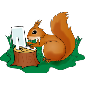 Squirrel at computer